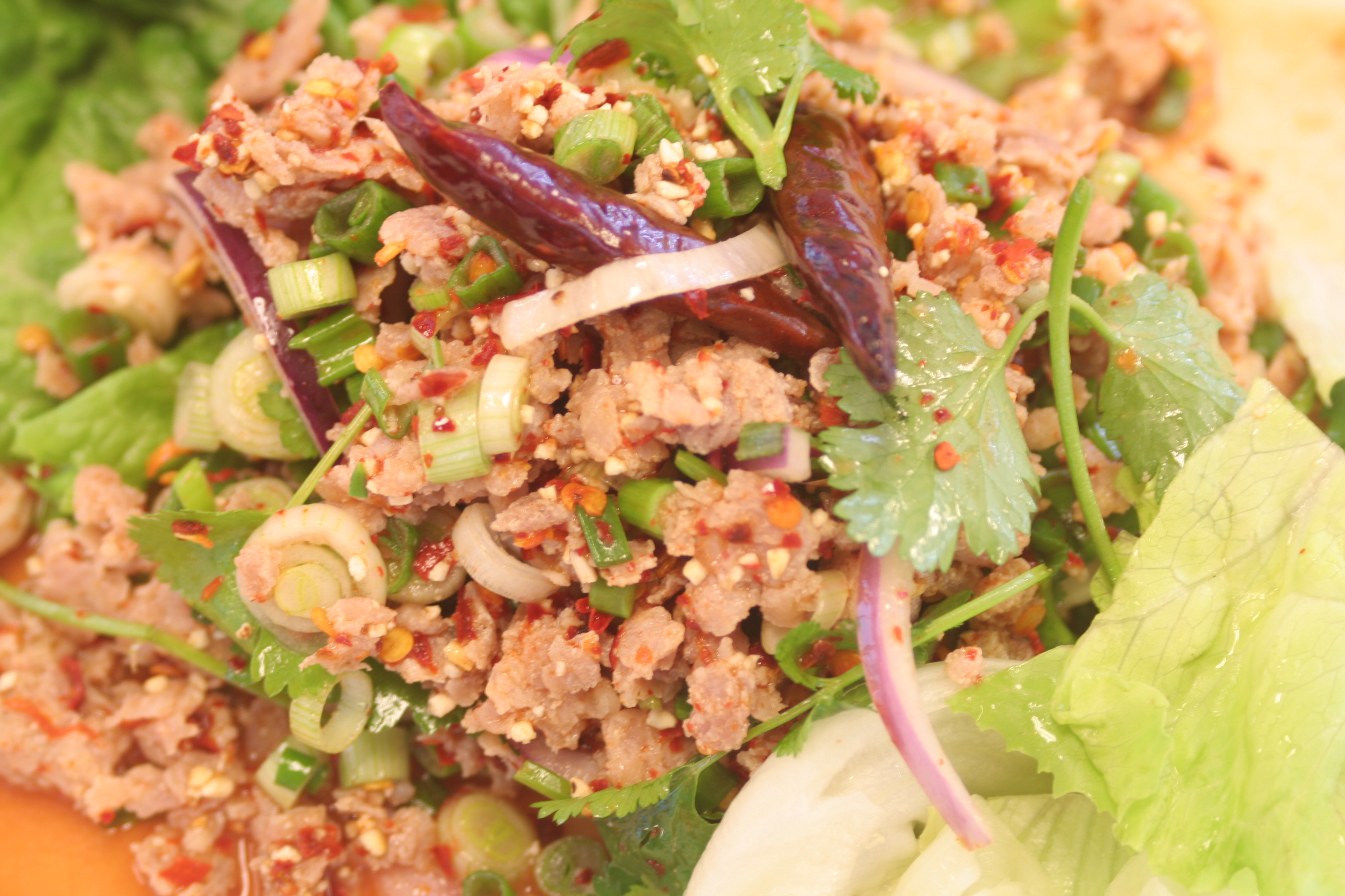 34 spicy chicken salad grounded chicken with lim juice onion ground ...